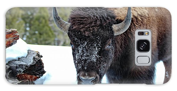 Yellowstone Buffalo Stare-down Galaxy Case