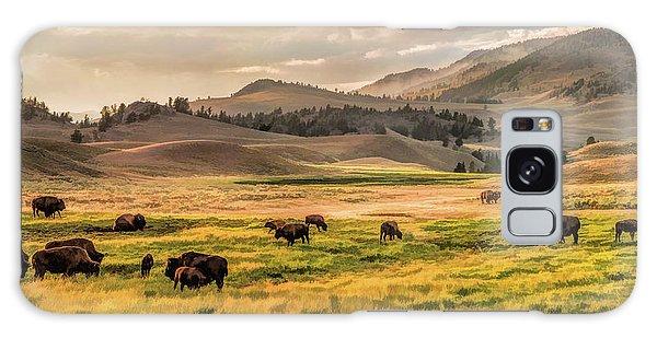 Yellowstone National Park Lamar Valley Bison Grazing Galaxy Case