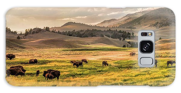 Yellowstone National Park Lamar Valley Bison Grazing Galaxy Case