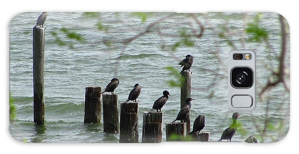 York River Cormorants Galaxy Case