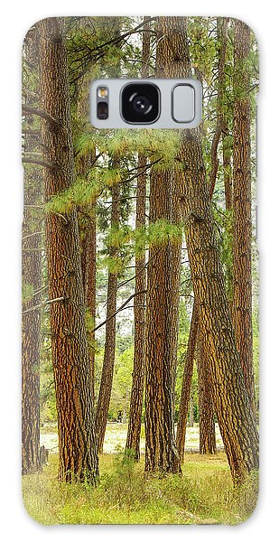 Yosemite Galaxy Case