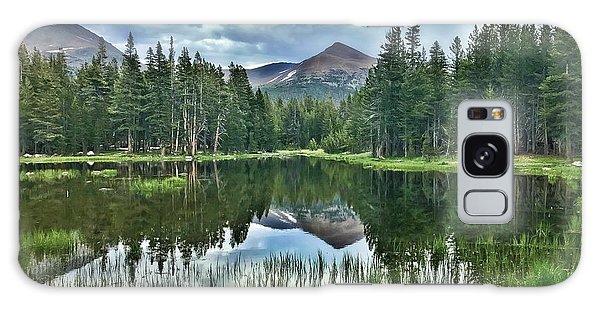 Yosemite Reflection Galaxy Case