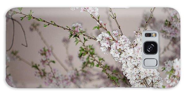 Yoshino Cherries Lavender Galaxy Case