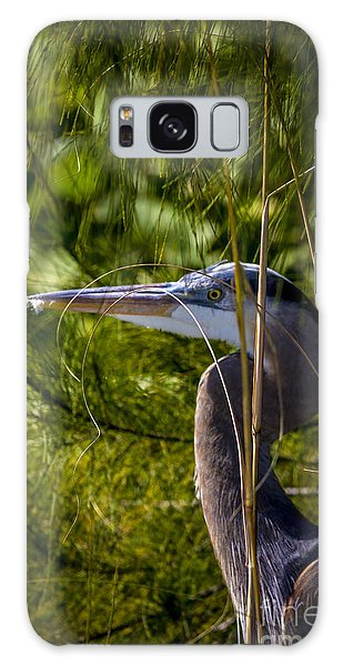 Mangrove Galaxy Case - You Can't See Me by Marvin Spates