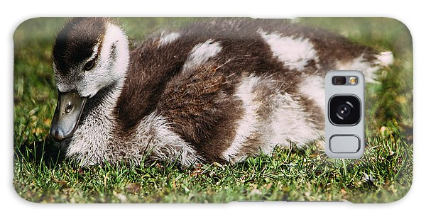 Gosling Galaxy Case - Young Baby Goose by Pati Photography