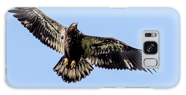 Young Bald Eagle Flight Galaxy Case