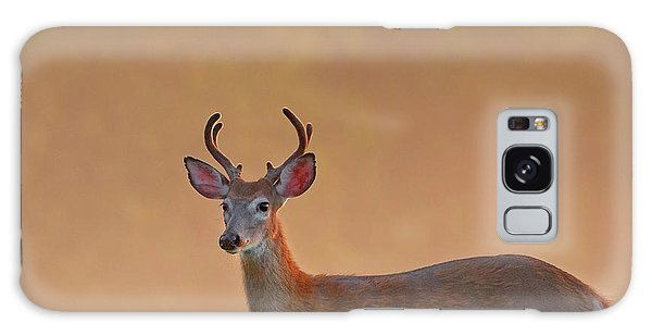 White-tailed Deer Galaxy Case - Young Buck Square by Bill Wakeley