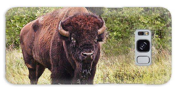 Young Buffalo Galaxy Case