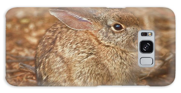Young Cottontail In The Morning Galaxy Case