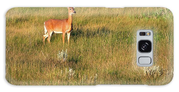 White-tailed Deer Galaxy Case - Young Deer by Todd Klassy