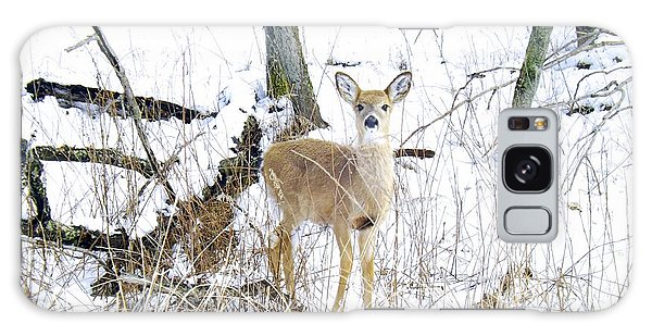 Young Doe And Spring Snow Galaxy Case