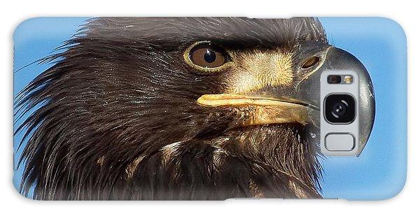 Young Eagle Head Galaxy Case