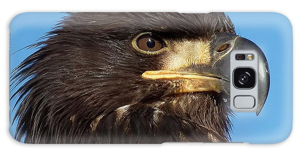 Young Eagle Head Galaxy Case by Sheldon Bilsker