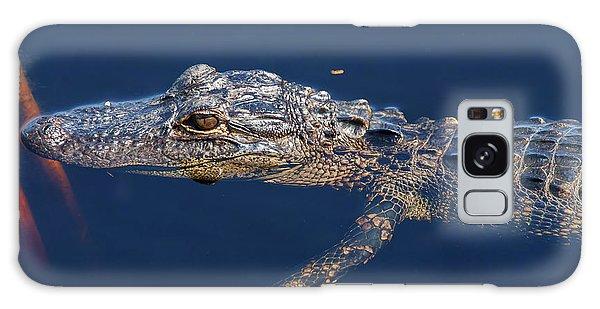 Young Gator 1 Galaxy Case