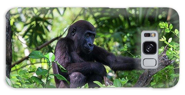 Young Gorilla Galaxy Case
