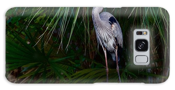 Young Great Blue Heron Galaxy Case