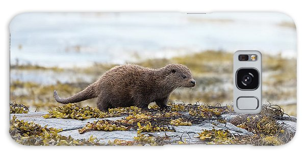 Young Otter Galaxy Case