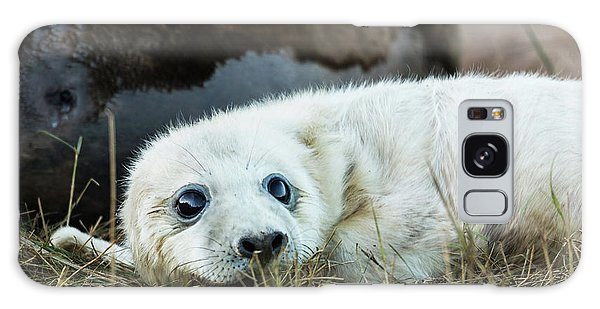 Young Pup Galaxy Case