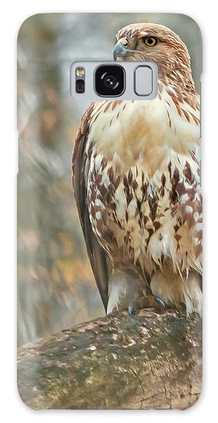 Young Red Tailed Hawk  Galaxy Case