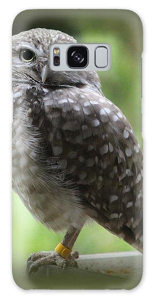 Young Snowy Owl Galaxy Case