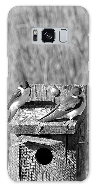 Young Tree Swallows Galaxy Case