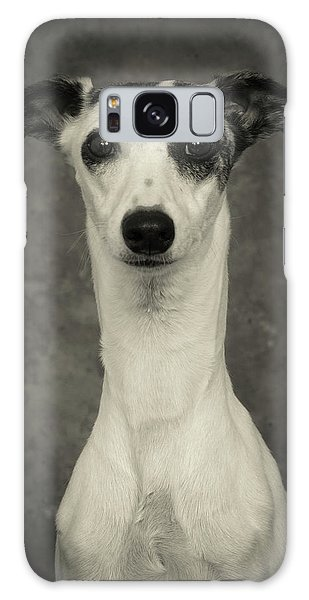 Young Whippet In Black And White Galaxy Case
