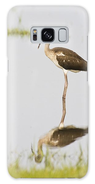 Young White Ibis Galaxy Case