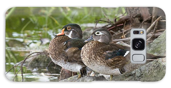 Young Wood Duck Pair Galaxy Case