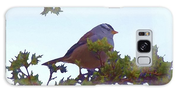Galaxy Case featuring the digital art White Crowned Sparrow In Cedar by Shelli Fitzpatrick