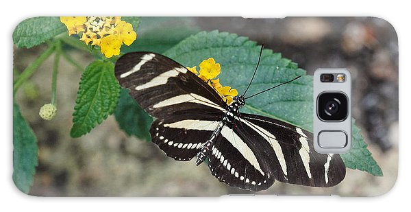 Galaxy Case featuring the photograph Zebra Longwing Butterfly - 1 by Paul Gulliver