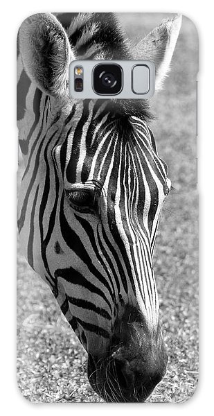 Zebra Portrait Galaxy Case