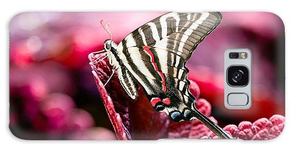 Zebra Swallowtail On Red Head Coleus Galaxy Case