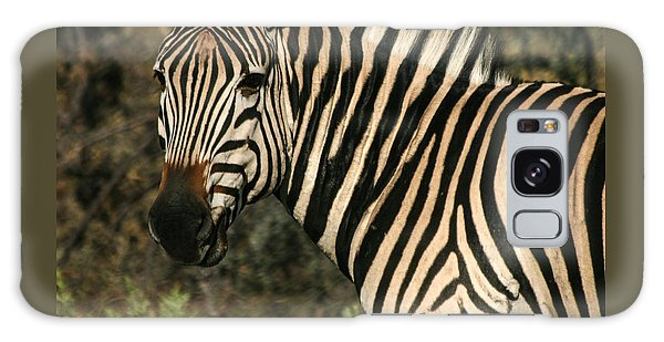 Zebra Watching Sq Galaxy Case