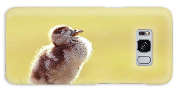 Gosling Galaxy Case - Zen Bird - Gosling Enjoying The Sun Light by Roeselien Raimond