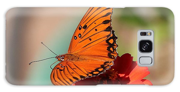 Zinnia With Butterfly 2669 Galaxy Case