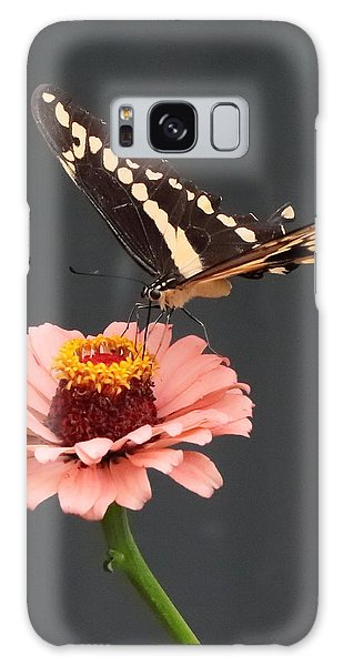 Zinnia With Butterfly 2702 Galaxy Case