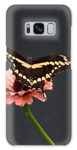 Zinnia With Butterfly 2708  Galaxy Case