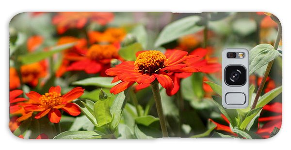 Zinnias In Autumn Colors Galaxy Case