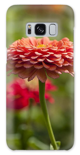 Zinnia Portrait Galaxy Case