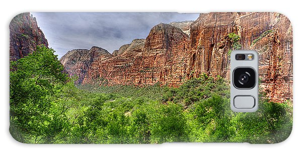 Galaxy Case featuring the photograph Zion View Of Valley With Trees by Dan Friend