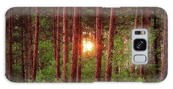 010 - Pine Sunset Galaxy Case