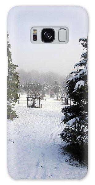 30/01/19  Rivington. Memorial Arboretum. Galaxy Case
