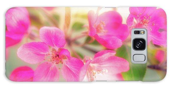 Apple Blossom 6 Galaxy Case