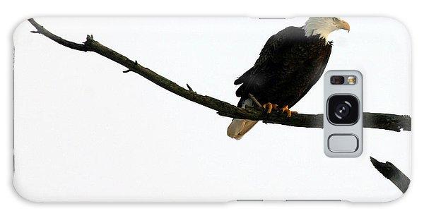 Bald Eagle 120501 Galaxy Case