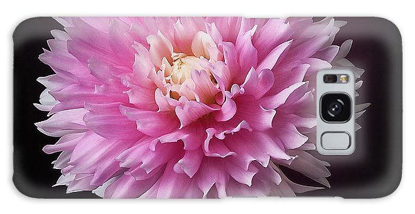 Galaxy Case featuring the photograph Dahlia 'chilson's Pride' by Ann Jacobson
