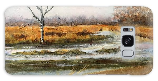 Early Spring On The Marsh Galaxy Case