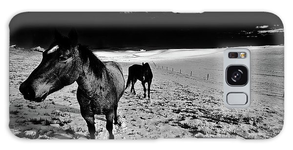 Galaxy Case featuring the photograph Horses On The Palouse by David Patterson