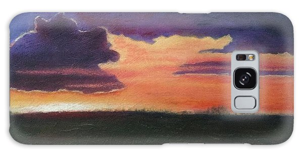 Marsh Sunset Galaxy Case