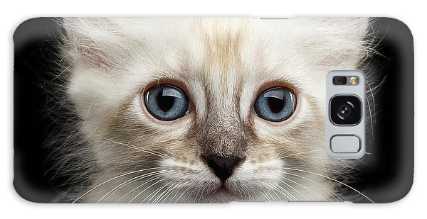 Cat Galaxy S8 Case - Mekong Bobtail Kitty With Blue Eyes On Isolated Black Background by Sergey Taran