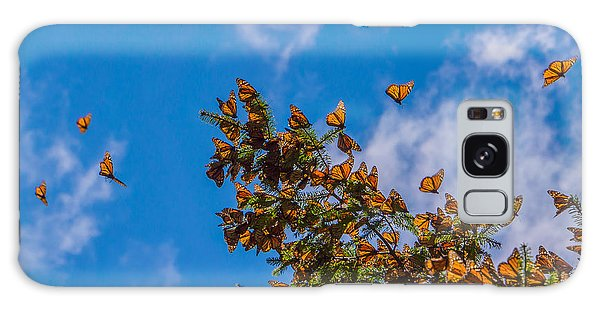 No People Galaxy Case - Monarch Butterflies On Tree Branch In by Jhvephoto